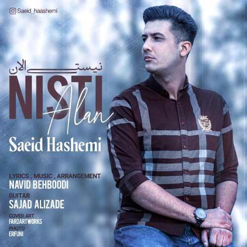 دانلود آهنگ نیستی الان از سعید هاشمی