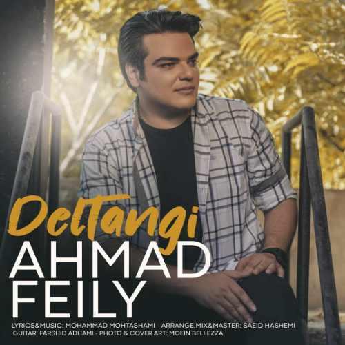 دانلود آهنگ دلتنگی از احمد فیلی