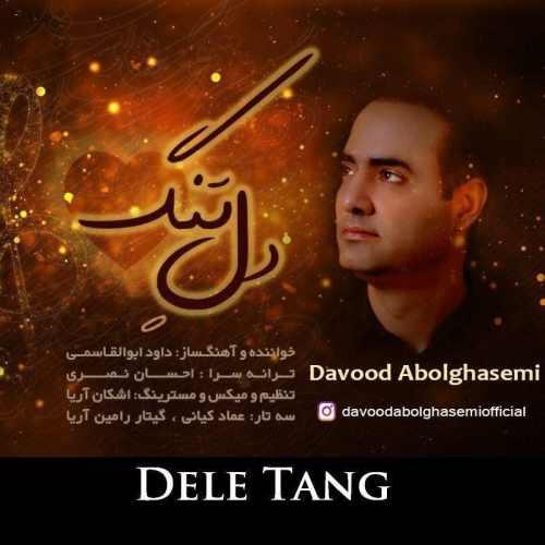 دانلود آهنگ دل تنگ از داوود ابوالقاسمی