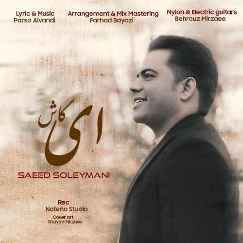 دانلود آهنگ ای کاش از سعید سلیمانی