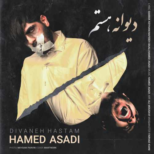 دانلود آهنگ دیوانه هستم از حامد اسدی