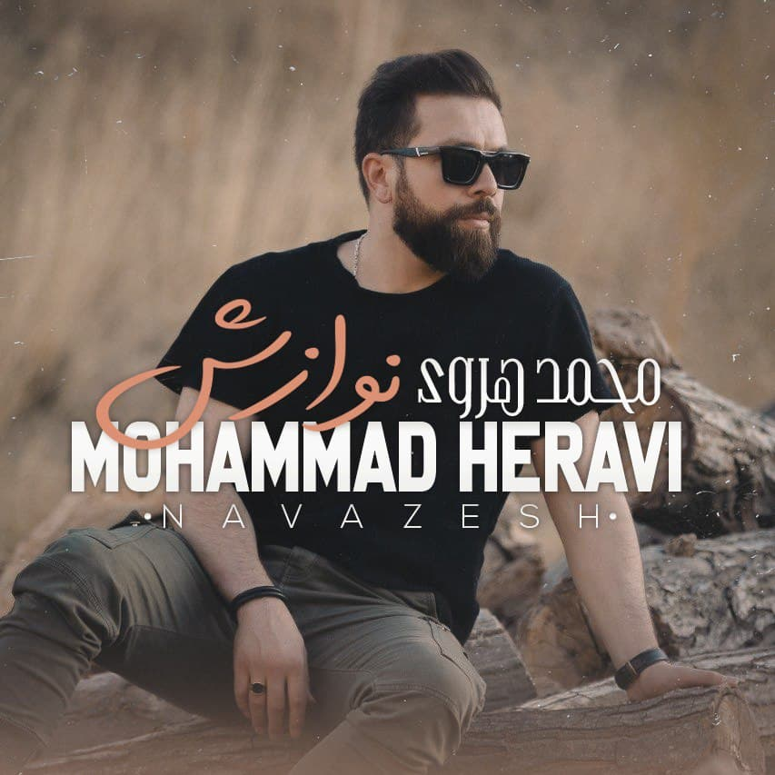 دانلود آهنگ نوازش از محمد هروی